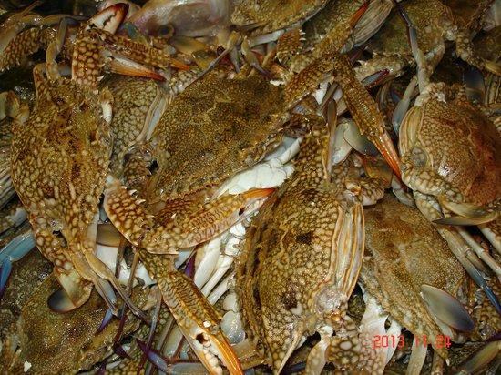 Fares Seafood : Крабовые развалы.