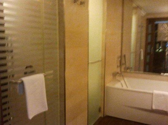 Gran Melia Palacio de Isora Resort & Spa: Puertas separadas para ducha y wc