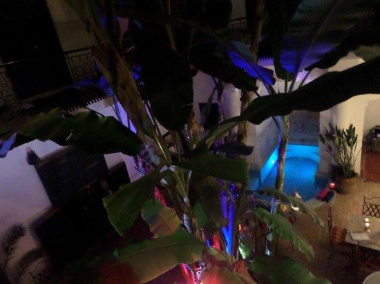 Riad Aloes: Courtyard