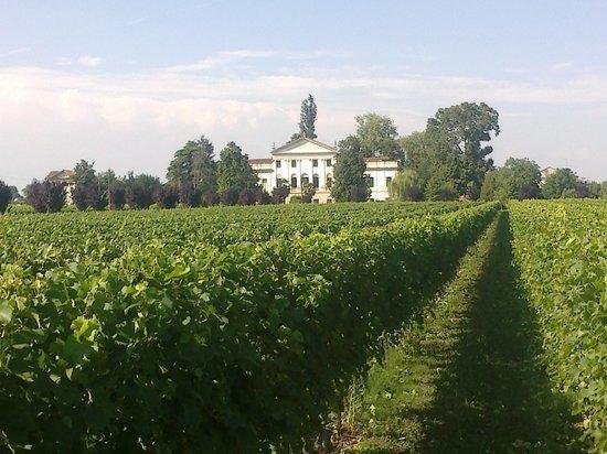 Province of Padua, İtalya: Due Carrare Villa Dolfin-Dal Martello detta La Mincana