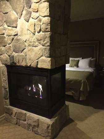 Grand Cascades Lodge: Fireplace separating living room/bedroom area