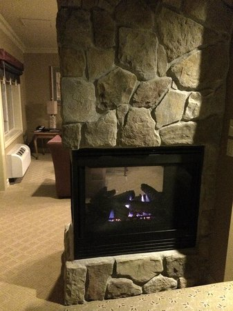 Grand Cascades Lodge: Fireplace in room