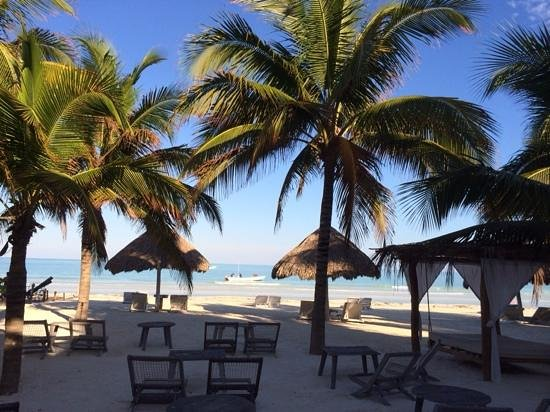 Holbox Hotel Casa las Tortugas - Petit Beach Hotel & Spa: The ultimate meal-time view