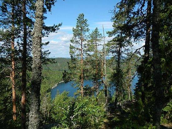 Kammiovuori Trail