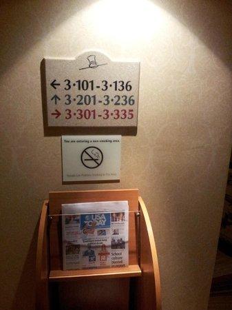 Monte Carlo Resort & Casino : Terceiro andar, quarto 101. Isso, é isso mesmo que você está lendo