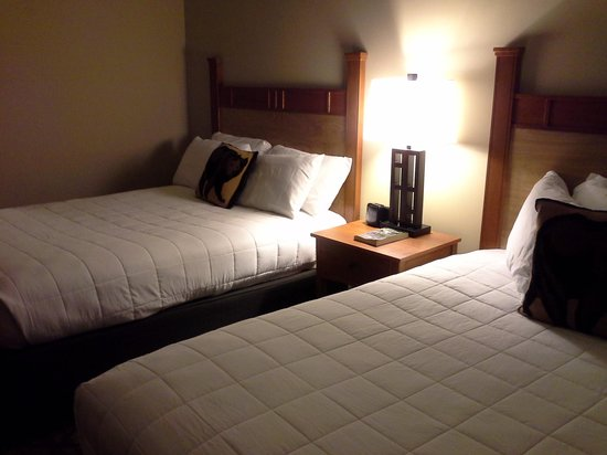 Black Bear Lodge: queen beds take up most of the space