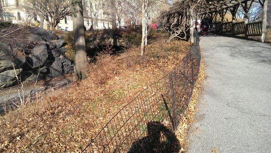 Central Park: No verão e primavera o cenário muda...