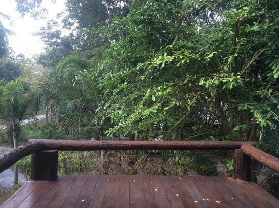 Sensi Paradise: Pool view room
