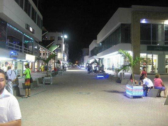 Decameron Aquarium: City at night