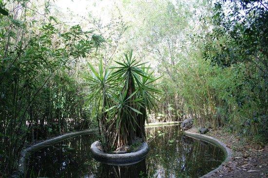 Fonda El Postillon: Pond
