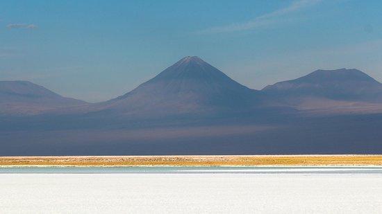 Laguna Tebinquinche: Sal, água, e Licancabur
