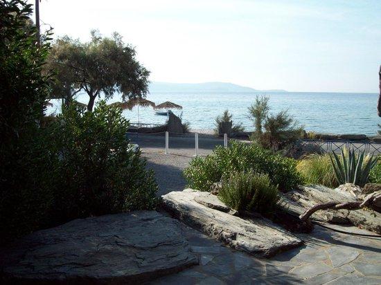Oasis Studios: Oasis sea view