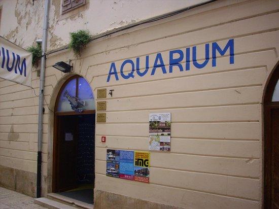 Porec Aquarium: Aquarium Porec - Eingang