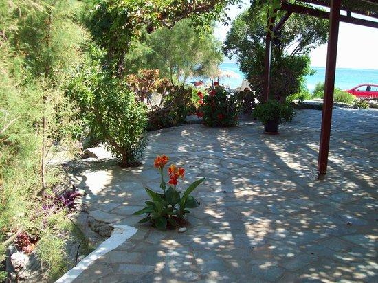 Oasis Studios: Oasis veranda