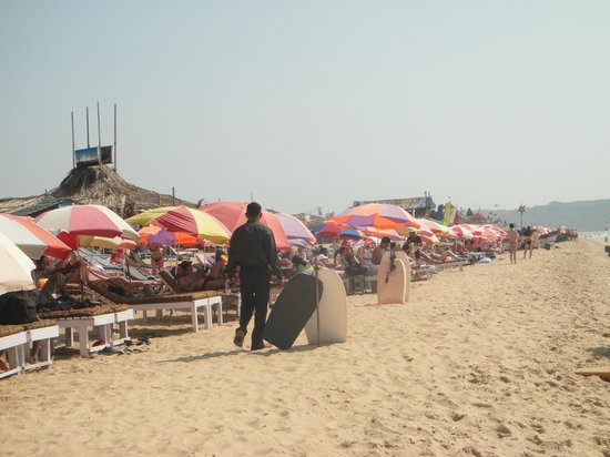 Candolim Beach: Beach