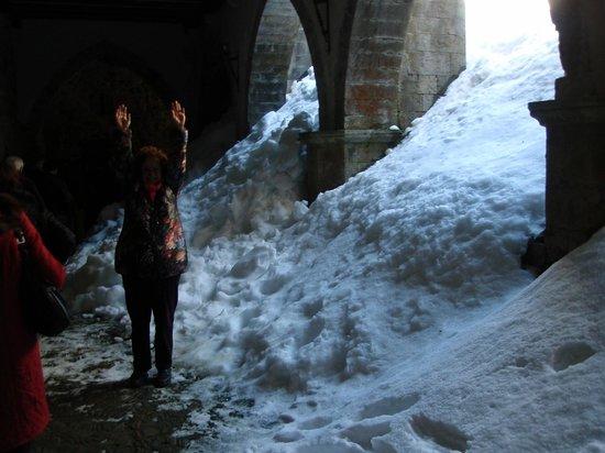 Colegiata de Roncesvalles: Claustro y yo