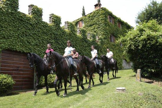 horse trecking La Forra