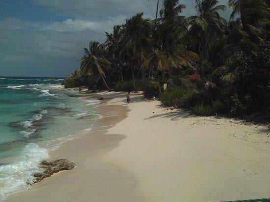Johnny Cay: Beach