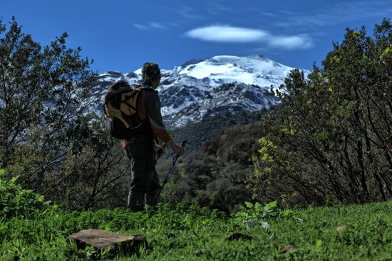 Santiago, Chile: Flecha Extrema