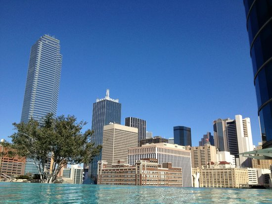 Omni Dallas Hotel: Dallas Skyline from Outdoor Pool Area