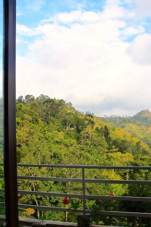 Ella's Edge Resort: Room with a view