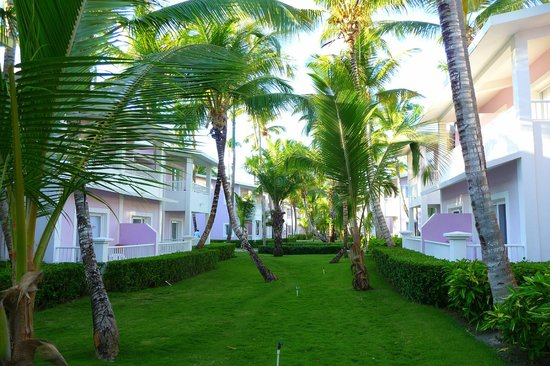 ClubHotel Riu Bambu: Un superbe complexe!