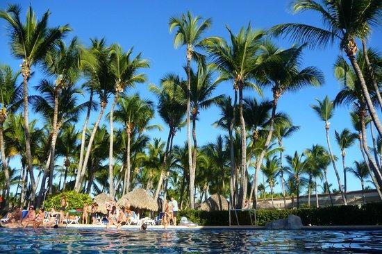 ClubHotel Riu Bambu : La piscine est superbe, mais elle se remplie vite surtout quand il y a du waterpolo