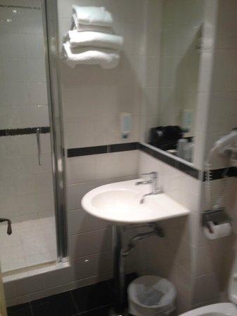 Hotel Le Central: wc lavabo et douche