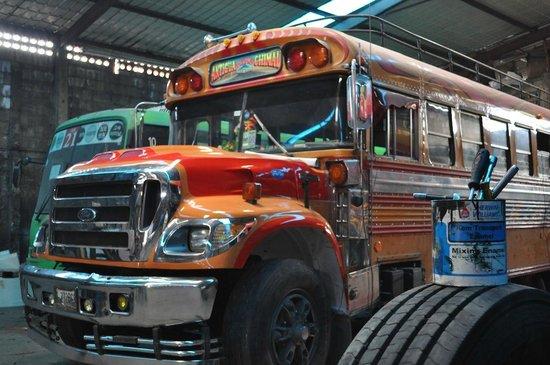 Ninos de Guatemala