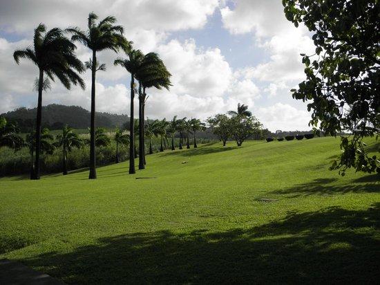 Habitation Clement: parc