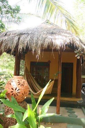 Surf 'n Sun Guesthouse & Restaurant