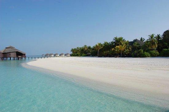 KIHAA Maldives Island Resort & Spa: spiaggia