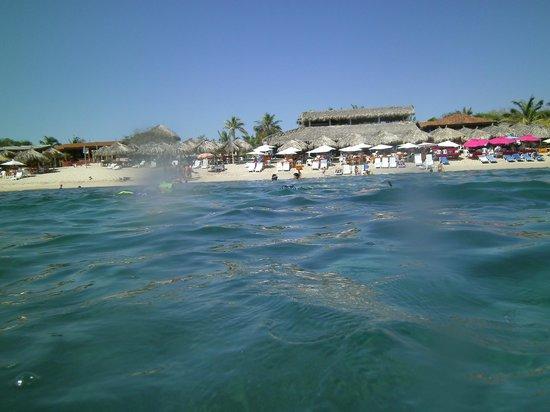 Ixtapa Island (Isla Ixtapa): View from snorkeling
