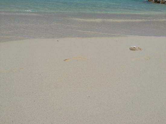 Kurumba Maldives: white powder sand beach at Kurumba reef