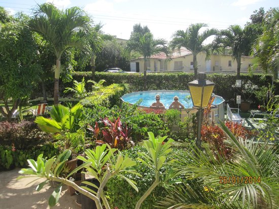 Palm Paradise Guest House + 2 Apartments: grounds and small pool