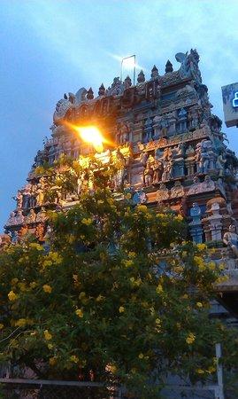 Kapaleeshwar Temple: Temple Gopura architectural wonder