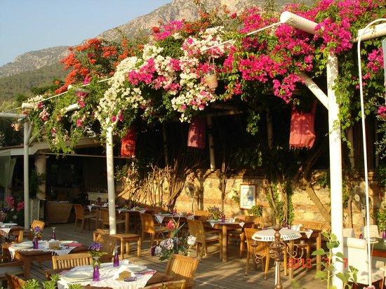 Help Beach Lounge: Терраса ресторана.