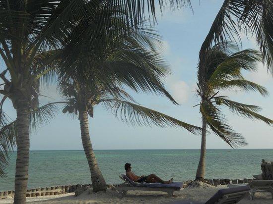 "Jacaranda Beach Resort: spiaggia jacaranda ""sardegna2"""