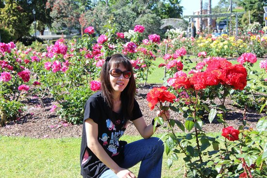 Parnell Rose Gardens: My wife enjoying the red roses