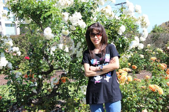 Parnell Rose Gardens: Thumbs up for the beautiful white roses