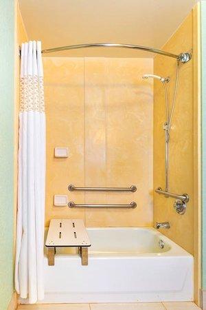 هامبتون إن هانتسفيل أرسنالساوث بارك واي: Hampton Inn Huntsville - Arsenal/South Pkway Bathroom