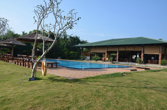 Camellia Resort and Spa: pool/restaurant