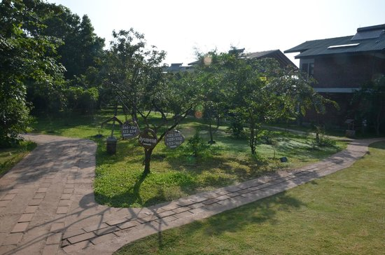 Camellia Resort and Spa: Hotel grounds