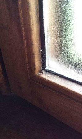 Il Noceto Umbro: finestra