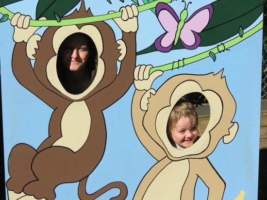 York's Wild Kingdom Zoo and Fun Park : Photo Opt
