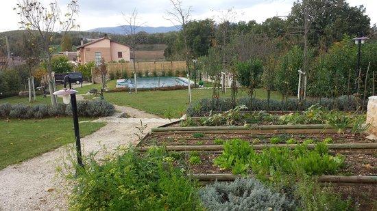 Country House il Vecchio Ippocastano: AGRITURISMO E PISCINA