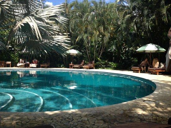 Harmony Hotel Nosara: Gorgeous pool