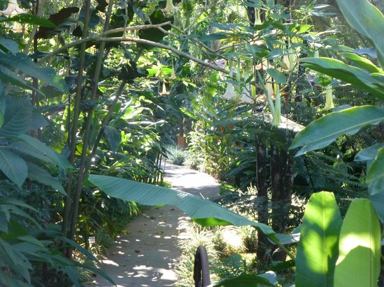 Tacacori EcoLodge: The pathway to the Casitas