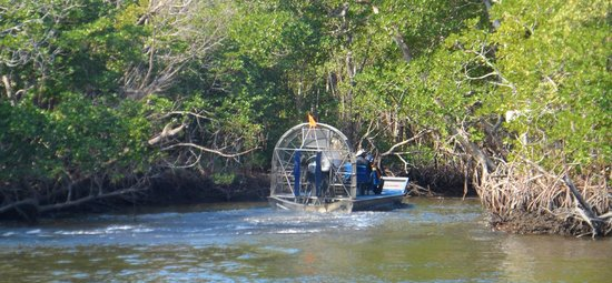 Everglades City Airboat Tours: Airboat