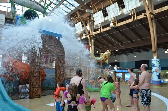Soaring Eagle Waterpark and Hotel : Water Dunk Zone